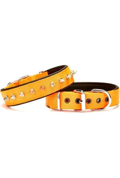 Doggie Çivi Desenli Köpek Tasması 3*65 cm Turuncu
