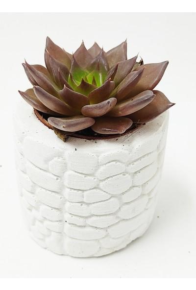 Hastunç Çiçekli Dekoratif El Yapımı Beton Saksı KC010