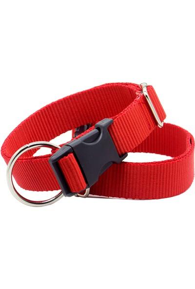 Petviya Premium Collection Ayarlanabilir Dayanıklı Köpek Boyun Tasması
