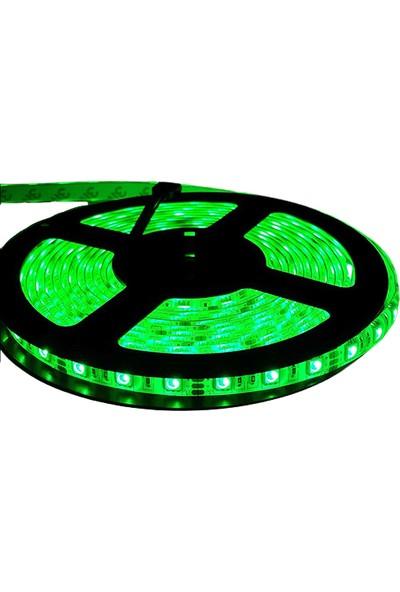 Ack 5201-011 4,8W/MT Yeşil LED Şerit (5mt)