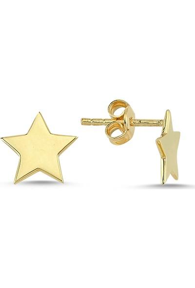 Bigakan Kadın Yıldız Gümüş Küpe Altın Kaplama Gümüş Küpe