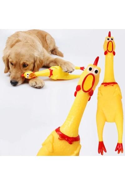 Carino Öten Tavuk Köpek Oyuncağı Large 36 cm