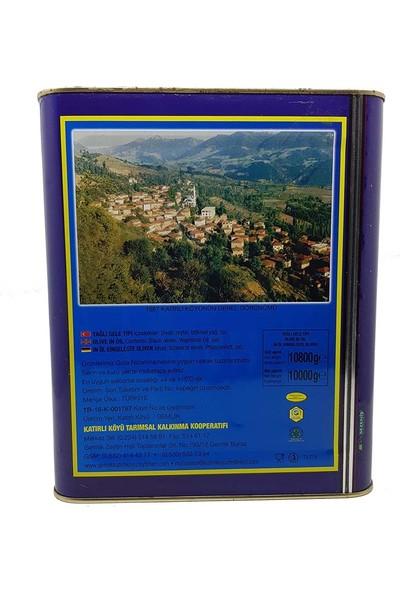 Tar-Koop Katırlı Köyü Katırlı Köyü Kahvaltılık Siyah Zeytin 10 kg
