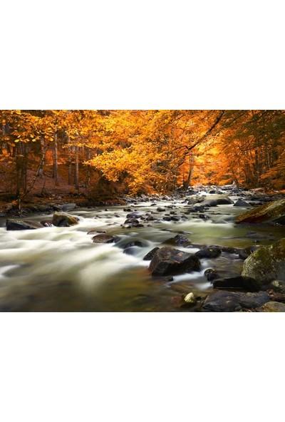 Syronix Orman ve Nehir Kanvas Tablo