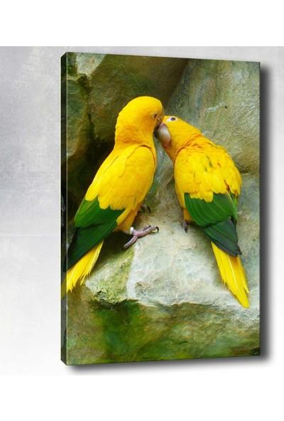 Syronix Kuşlar kanvas tablo