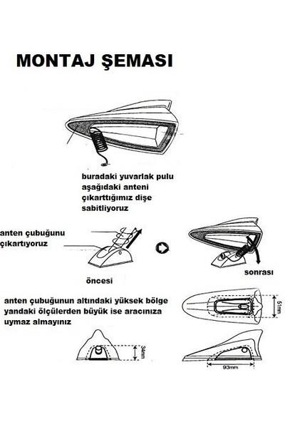 Boğaziçi Balık Sırtı Köpek Balığı Balina Gerçek Anten