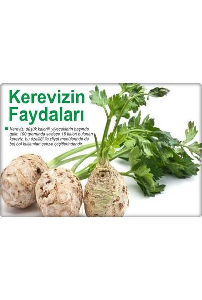 Arzuman Kök Kereviz Tohumu 10 gr