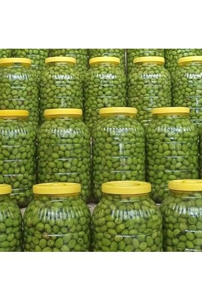 Zeytindalı Ev Yapımı Aydın Yöresi Kırma Zeytin 5 kg