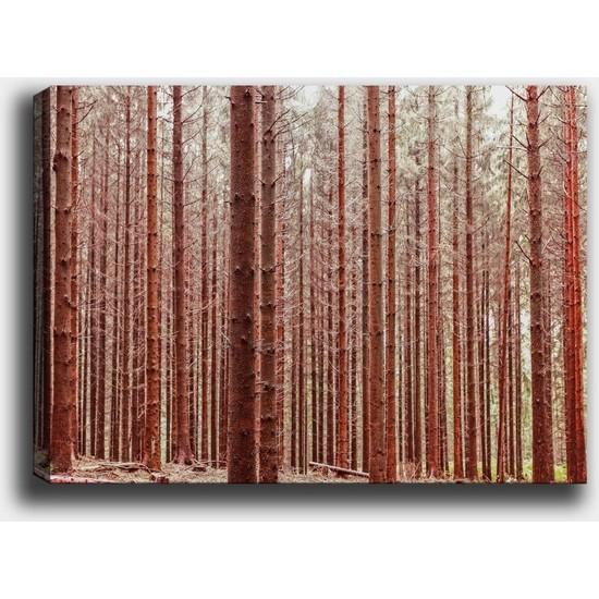 Syronix Kızıl orman kanvas tablo
