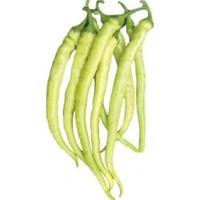Çam Tohum Acı Golden Cayenne Biber Tohumu Sarı Sivri Biber