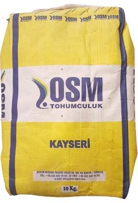 Osm Yonca Tohumu Kayseri Kaplamalı-Sertifikalı