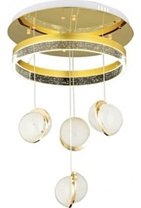 Burenze Luxury Modern Dörtlü Sarkıt LED Avize Gold Sarı BURENZE652