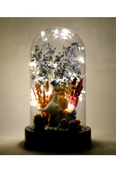 Burdan Eve Kuru Çiçekli Leylek ve Mavi Pusetli Bebek Temalı Işıklı Teraryum 10X18 cm Burdaneve