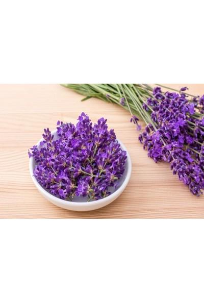 Arzuman Lavanta Çiçeği Tohumu (100 Adet)