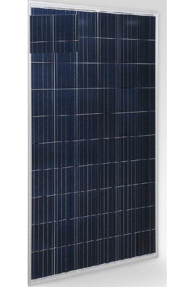 Cw Enerji 270 Wp Polikristal Güneş Paneli