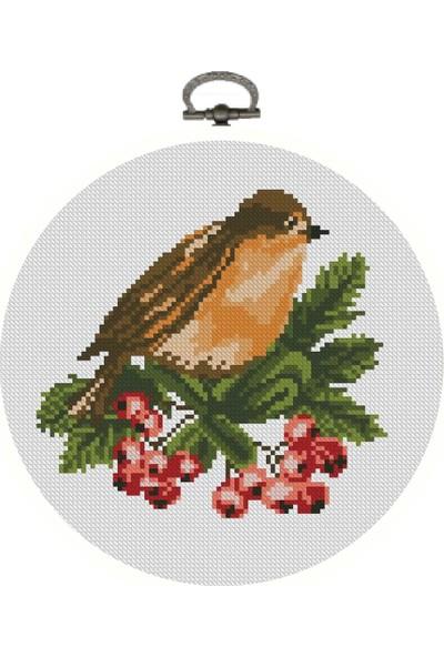 Favore Casa Esta Rosa Daire Büyük Kuş Etamin Goblen Set 22 cm