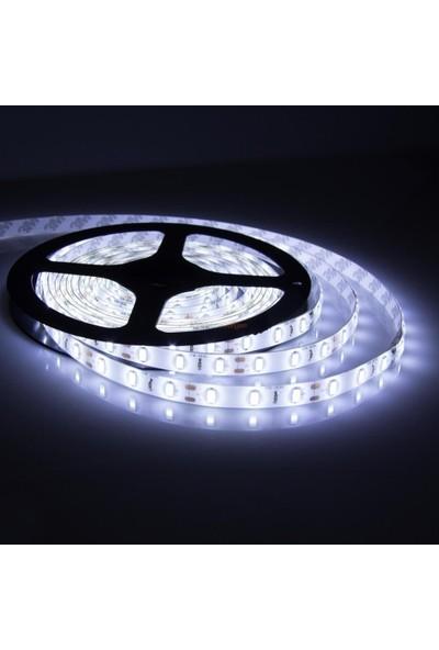 Cata 10 Çip Iç Mekan LED Şerit Beyaz Cata 5 Metre CT-4480