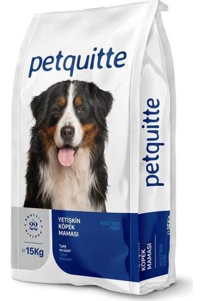 Petquıtte Balıklı Yetişkin Köpek Maması 15 kg