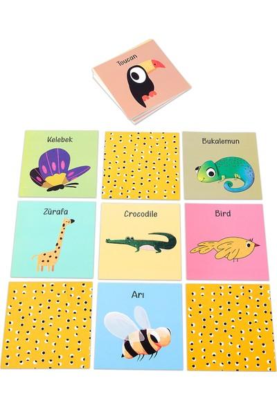 Hafıza Oyun Kartları