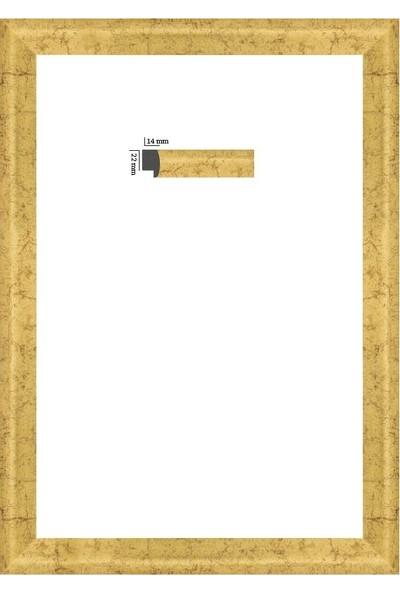 Selçuklu Sanat Puzzle Çerçevesi 22 mm 34 x 96 cm Eskitme Yaldız