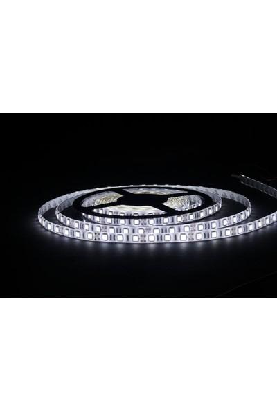 Cata 10 Çipli Şerit LED Işık Aydınlatma Beyaz 5 M Iç Mekan
