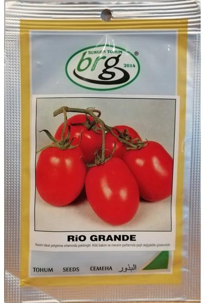 Bursa Tohum Rio Grande (Armut Domates) Tohumu 10 gr Bursa Tohum