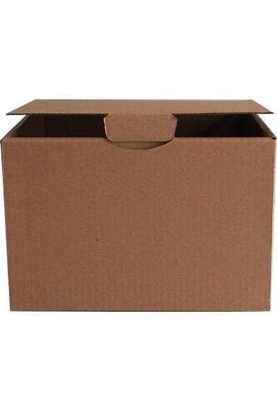 Boxplant E Ticaret Karton Kutusu 23X23X16 cm