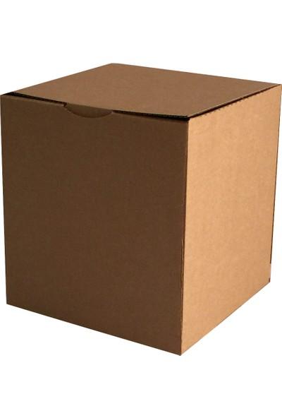 Boxplant E Ticaret Karton Kutusu 23X23X21 cm