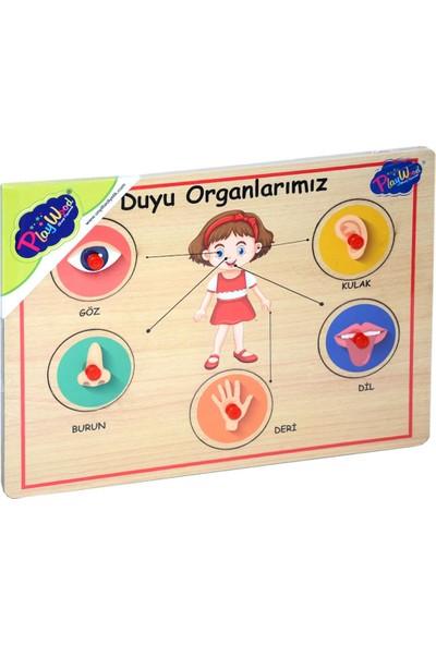Onyıl Oyuncak Ahşap Tutmalı Organlar