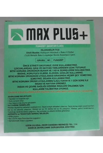 Maxplus Max Plus+ Islanabilir Toz (800 gr.) Bordo Bulamacı