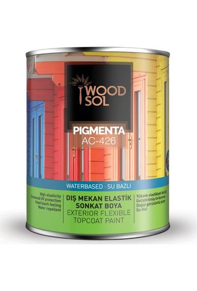 Woodsol Pigmenta Elastik Sonkat Ahşap Boyası 0.75 Lt