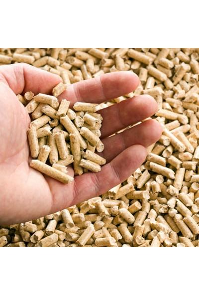 Kozlusan Dila 29 Kw Kuzineli Odun Kömür Sobası (Sulu Sistem)