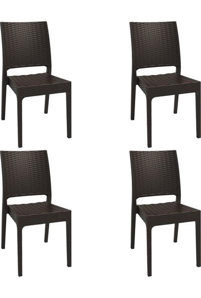 Romanoset Plastik Terra Rattan Kahverengi Bahçe Sandalyesi 4'lü Set