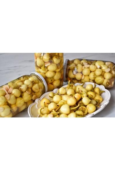 Çam Tohum Acı Süs Biberi Tohumu Ekim Seti Fındık Biberi Tohumu Topak Biber Tohumu 20 Tohum Saksı Toprak Kombin