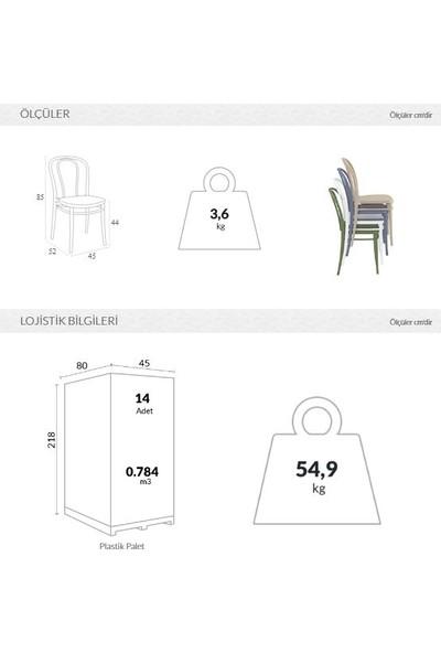 Siesta Vıctor Sandalye