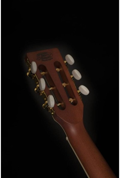 Washburn WP11SNS Harvest P11S Akustik Gitar - Naturel