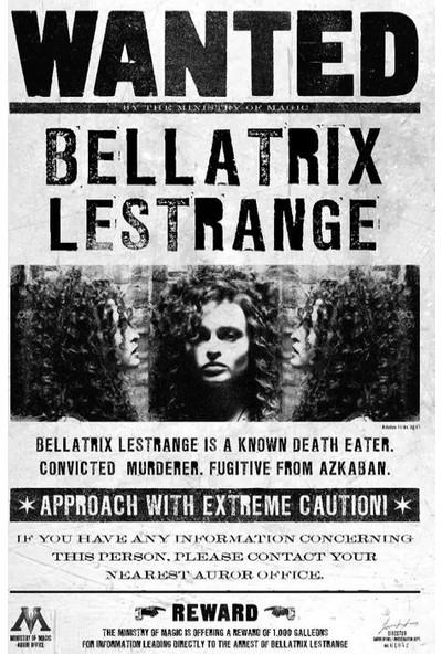Warner Bros Harry Potter Wanted Duvar Posteri Bellatrix Lestrange 50X70 cm