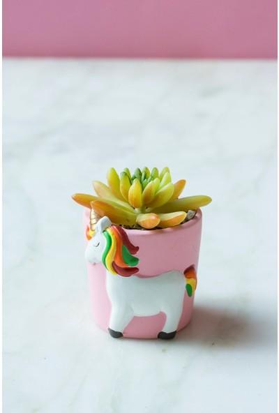 Arma House Unicorn Sarı Sukulent Vazo ( Yapay Çiçek )