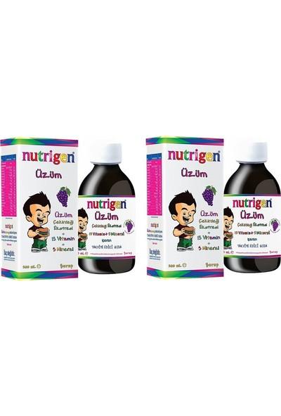 Nutrigen Çocuklar Için Üzüm Çekirdeği Ekstresi Multivitamin Şurup 200 ml x 2
