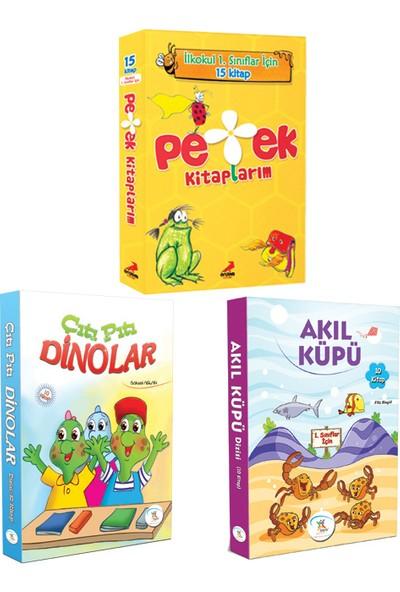 5 Renk 1. Sınıf Akıl Küpü-Çıtı Pıtı Dinolar Hikaye Seti-Erdem Yayınları Petek Kitaplarım Hikaye Seti