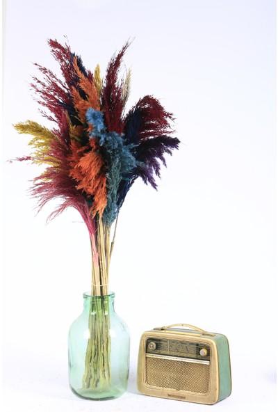 Mini Hediye Şoklanmış Dökülmeyen Rengarenk Kuru Çiçek Pampas 10 Adet 100CM