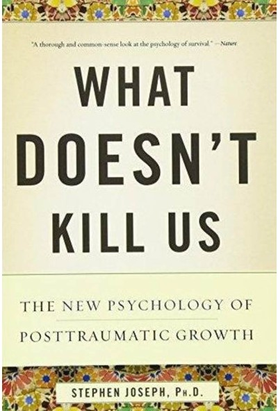 What Doesn't Kill Us - Stephen Joseph
