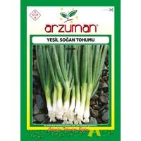 Arzuman Yeşil Soğan Tohumu 10 Gram