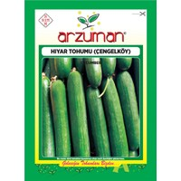 Arzuman Salatalık Tohumu (10 Gr) Çengelköy