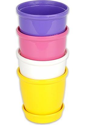 Bimbambom Mini Renkli Plastik Kaktüs Saksı 4 Adet, Sukulent Saksı, Tabaklı Mini Saksı