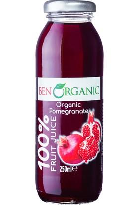 Benorganic Organik Nar Suyu 12 x 250 ml