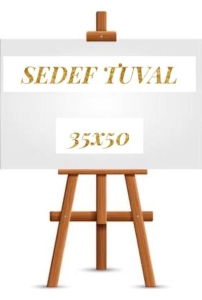Elif İş Eğitimi Tuval Yağlı Boya Başlangıç Seti Öğrenci Tipi 35 x 50 cm