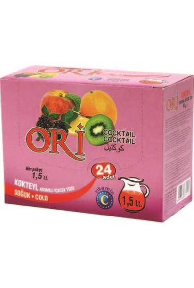 Ori Kokteyl Aromalı Soğuk Içecek Tozu 9 gr x 24