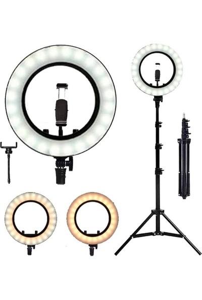 Ring Light 240 LED Işıklı 3 Farklı Işık Tonlu Tripod 26CM Ring Light 240 LED Işıklı
