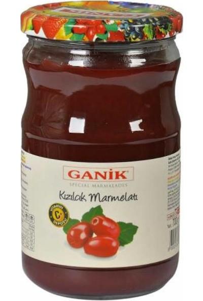 Ganik Kızılcık Marmelatı 700 gr